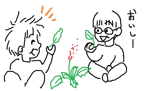 カタバミとスイバを食べる子供たち